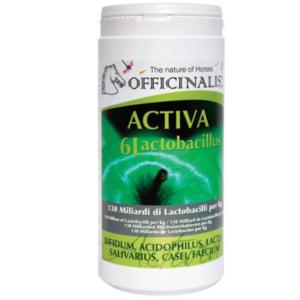 Activa 6L