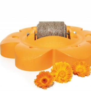 Lolly Roll Arancio – Officinalis