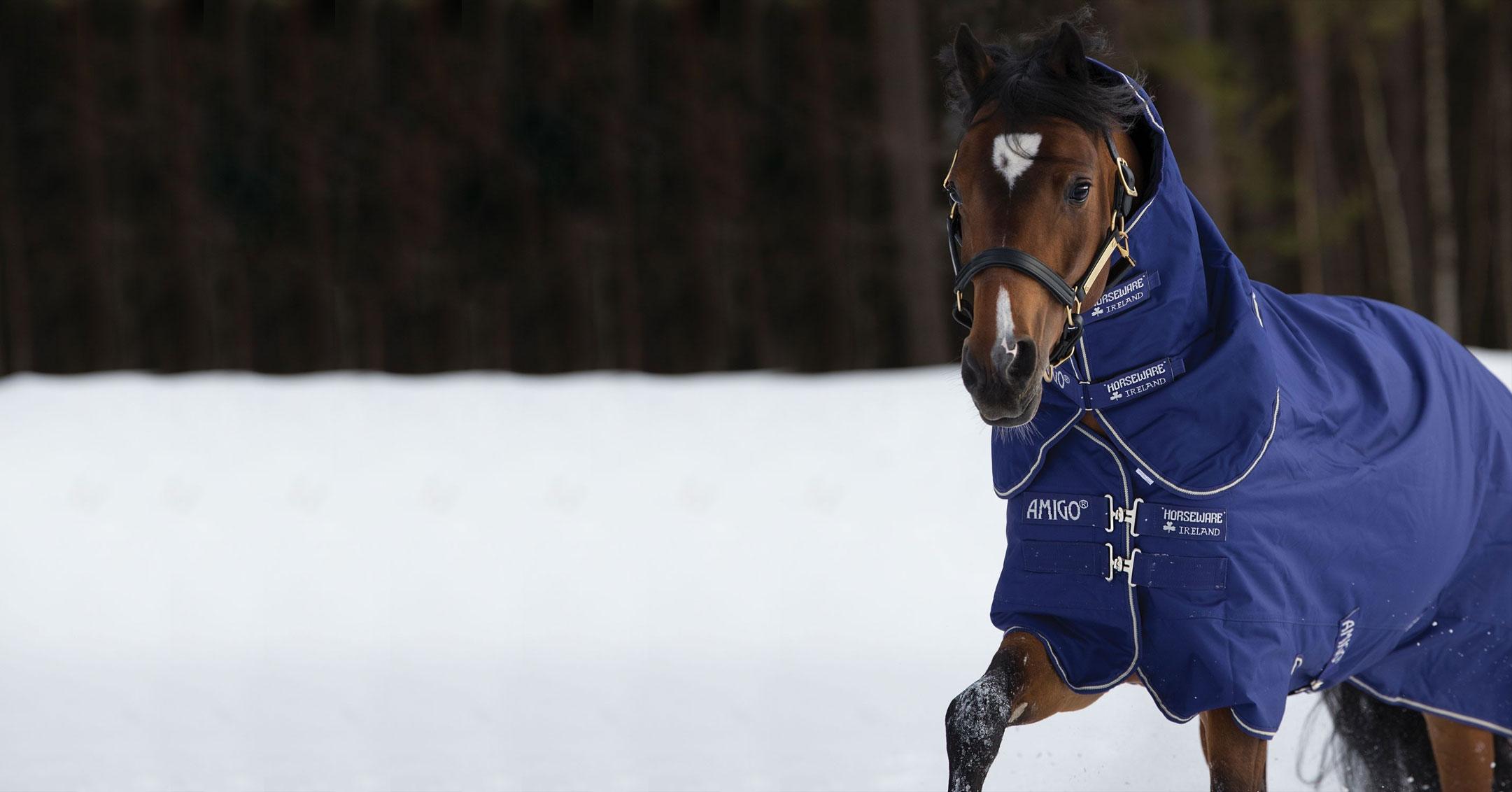 vendita online copertine per cavalli amigo hero 6 horseware