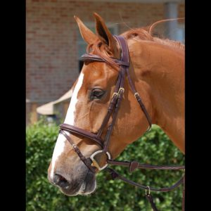 flash-noseband-bridle