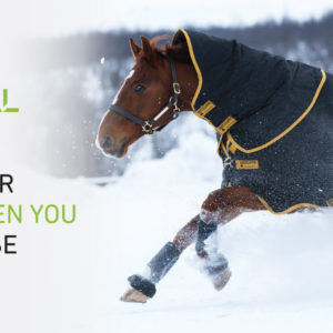 horsepal-1600x600px_v3
