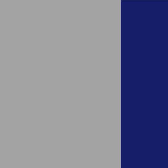 Argento/Blu